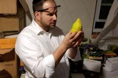 Rabbi Dani Staum