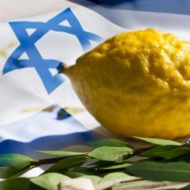 Israeli – Chinuch Set
