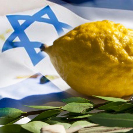 israel-flag-img1